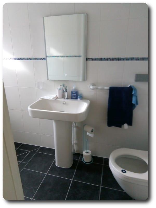 Timber Frame Washroom Extension